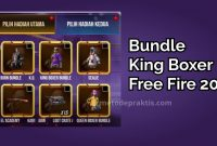 Bundle King Boxer 2021